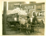 Kraut Company Cabbage Delivery Photograph