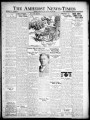 The Amherst news-times. (Amherst, Ohio), 1932-07-28