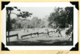 Fort Hill, guardrail completed photograph