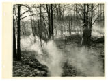New Straitsville smoke from underground photograph