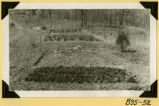 Fort Hill, nursery stock photograph