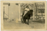 Marie Young riding a pony photograph