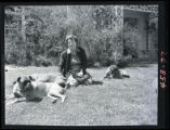 Mary Bromfield and her dogs
