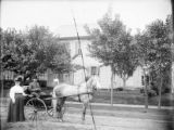 Man and woman with buggy photograph