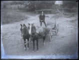 Man and horse-drawn cart