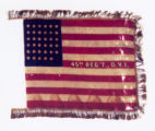 Camp Colors of 45th O.V.I.