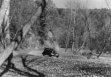 Driving near Ash Cave photograph