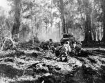 129th Infantry during Battle of Bougainville