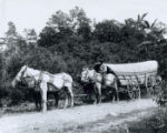Conestoga wagon on National Road photograph