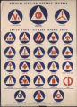 Defense insignia poster