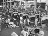 Jeffrey Manufacturing Company Factory Interior