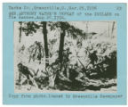 Battle of Fallen Timbers drawing photograph