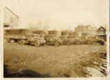 Yankee Lines Trucking Fleet Photograph