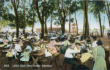 Coney Island Picnic Area Postcard