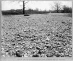 Gravel Deposited By 1913 Flood Photograph