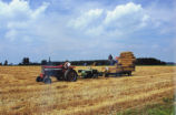 Hay Harvesting Photograph